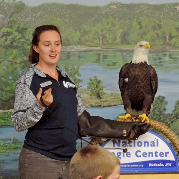 Live Eagle Program @ National Eagle Center